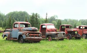 Old rusted out trucks