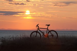 bicycle with the sunset